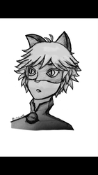 Cat Noir by Chill-wolf