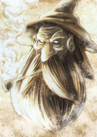 The Wizard by RonanSoares