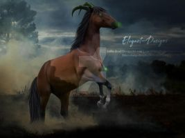HEE Horse Avatar | The Witches Voodoo {Full-Size} by Elegant-Designs