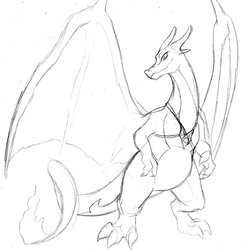 Shadow the Charizard by FayeleneFyre