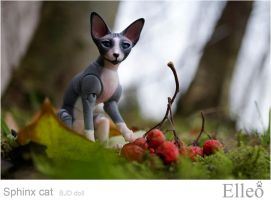 Sphinx doll cat 03 by leo3dmodels