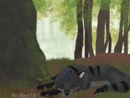 Slade - Forest by Wolfess16
