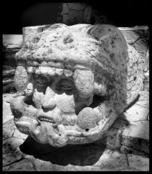 Snake Head Stone by taralse