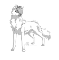 Canine with hair/mane by TotallyNotaWolf