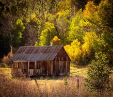 Hope Valley Cabin by StephGabler