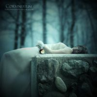 In The Sleeping Death by Corvinerium