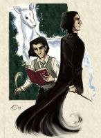 HalfBloodPrince by roby-boh