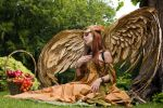 On Wings of Gold by Fairytas