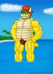Bowser Day 2017 - A hot koopa for a hot day by VJMorales