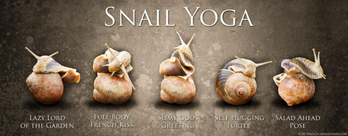 Snail Yoga by XResch