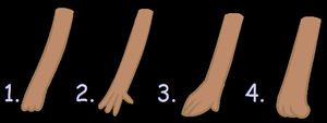 Hand Tests/ Practice Drawing by Coco-Glow
