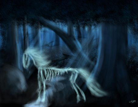The Ghostly Stallion by RevenantsWrath
