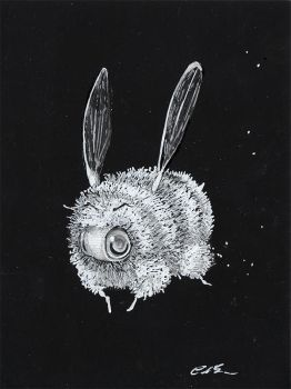 Inverse Bee Drawing by camilladerrico