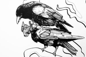 crows detail 1 by Moy-a