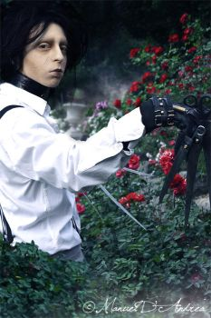 Welcome into my garden... by Nocte-Angelus