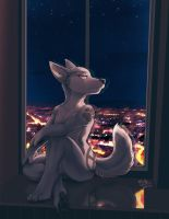Ideka on the Windowsill by RickGriffin