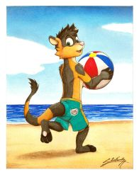 Xiam ferret at the beach! (For Warden) by SAGADreams