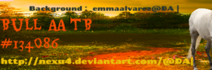 Banner for PIT Bull AA TB by Littlekitty09