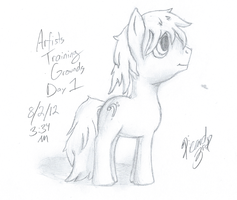 Artists Training Ground - Day 1 by Picardy-Third