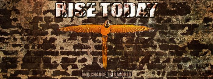 Rise Today by GreenHammock