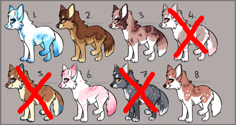 Canine Auction Adoptables - CLOSED by Okoe