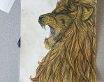 Realistic Lion by CodaForever