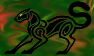 Panther by verreaux
