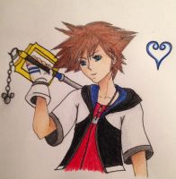 Sora (colored) by star27fire