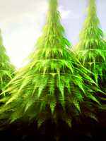 Fractal Trees by MeaganEmerson