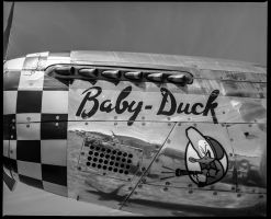 Baby Duck  #1 by Roger-Wilco-66