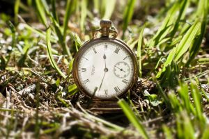 Nature and Time by Ovakill117