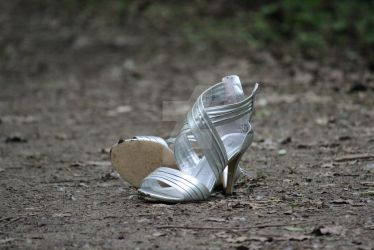 Silver Shoes by LoriBPhotography