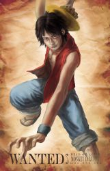 WANTED: MONKEY D. LUFFY by Doomsplosion