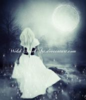 *moonlight magic* by BellaDreamArt