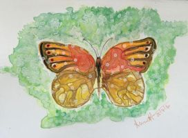 Butterfly by 8Annett8