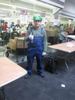 Luigi cosplay by videogameking613