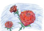 Ugh, Roses by kxeron