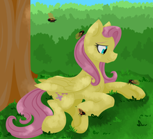 Buzz by Geomancing
