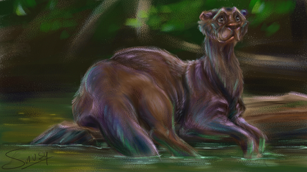 Otter by Snusy