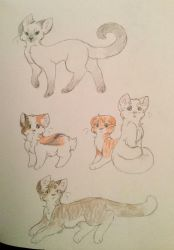 Cats by SsCrescentpawsS