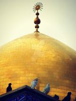 Sayidah Zeinab Mosque by HOOREIN