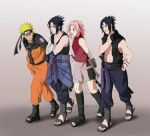 Comiss: team 7 expanded