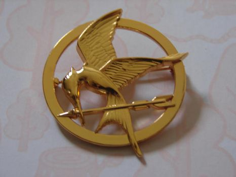 Hunger Games Pin by illegallyanonymous