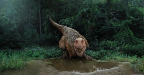 Tyrannosaurus on a watering hole by damir-g-martin