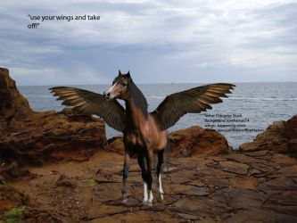 .Wings. by BlueHorses