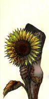 Sunflower by ILsama