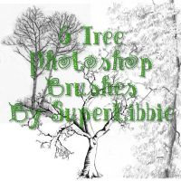6 Tree Photoshop Brushes by superlibbie