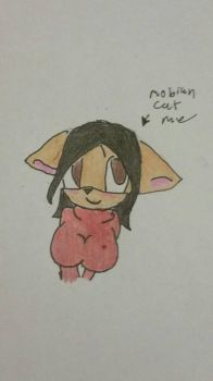 mobian me :3! by kittykitty91