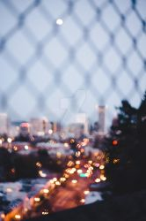 Fenced Life by GorgeousWreck