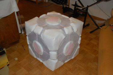Companion cube by rikkaruohimus